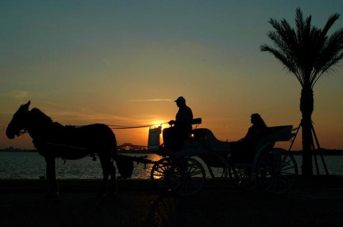 Horse Carriage during Sunset
