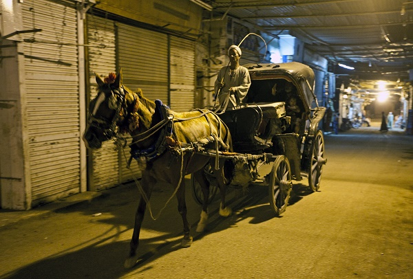 Horse Carriage in Back Streets of Aswan.